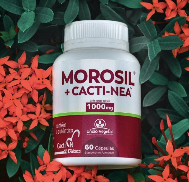 MOROSIL CACTINEA 60 caps União Vegetal